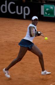 Venus Williams of the United States returns a shot to Maria Irigoyen of Argentina, in the Fed Cup World Group II first round women's singles tennis match, in Buenos Aires, Argentina, Sunday, Feb. 8, 2015. Williams defeated Irigoyen 6-1, 6-4 on Sunday to advance the United States to the Fed Cup playoffs in April. (AP Photo/Rodrigo Abd)